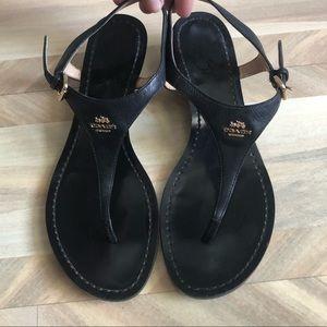 Coach Vitalia Black Leather Thong Wedge Sandal